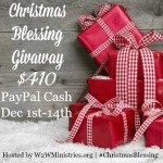 Christmas Blessing Giveaway @ AllOurDays.com $410 PayPal CASH 12/1-12/14